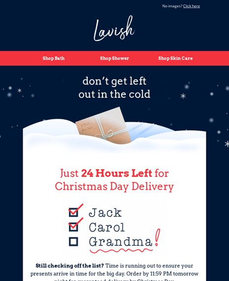 Last Chance Delivery Holiday Email Template