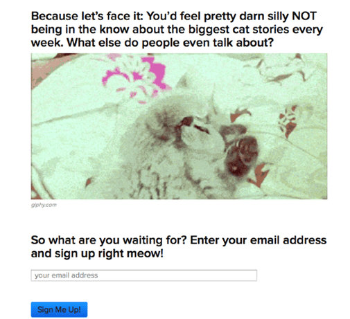 BuzzFeed – Email Lists into Segments
